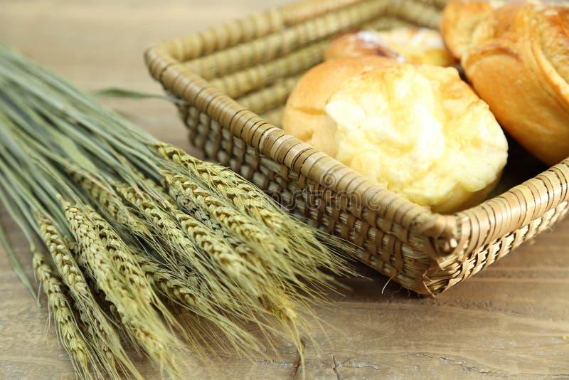 Petits pains dans un panier image libre de droits