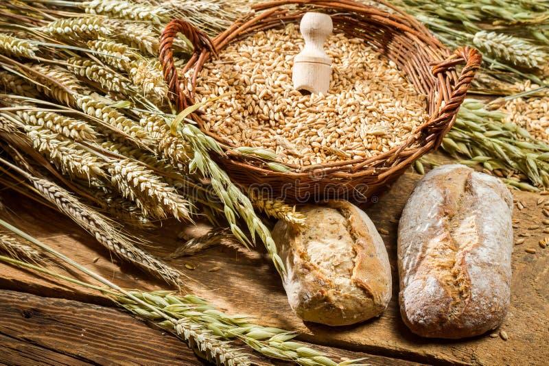 Petits pains entiers de grains et un panier avec des céréales photographie stock libre de droits