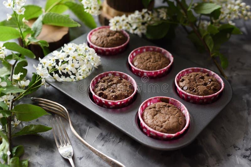 Petits pains faits maison délicieux de chocolat avec des fleurs de cerise d'oiseau sur le fond foncé images stock