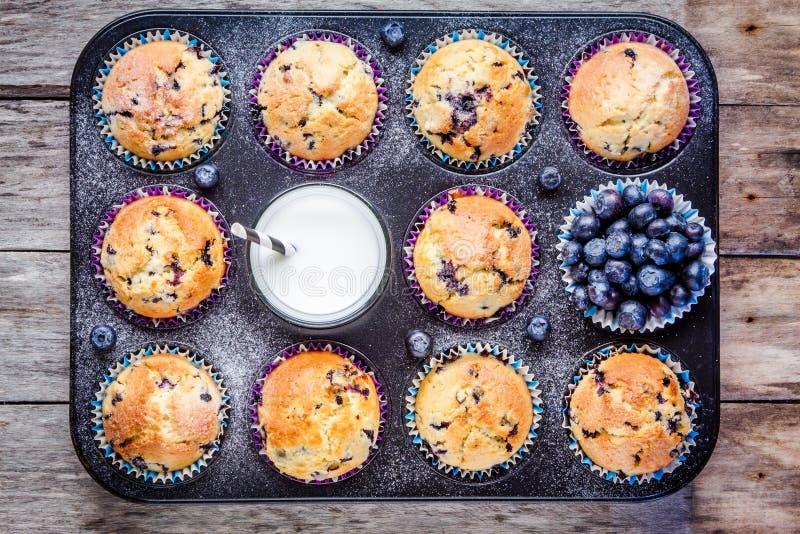 Download Petits Pains Faits Maison De Myrtille Avec Du Lait Et Des Baies Photo stock - Image du gluten, pain: 56488784