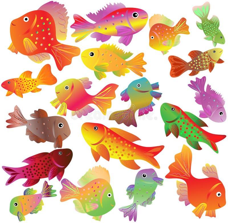Petits poissons de Verseau bariolé. photo libre de droits