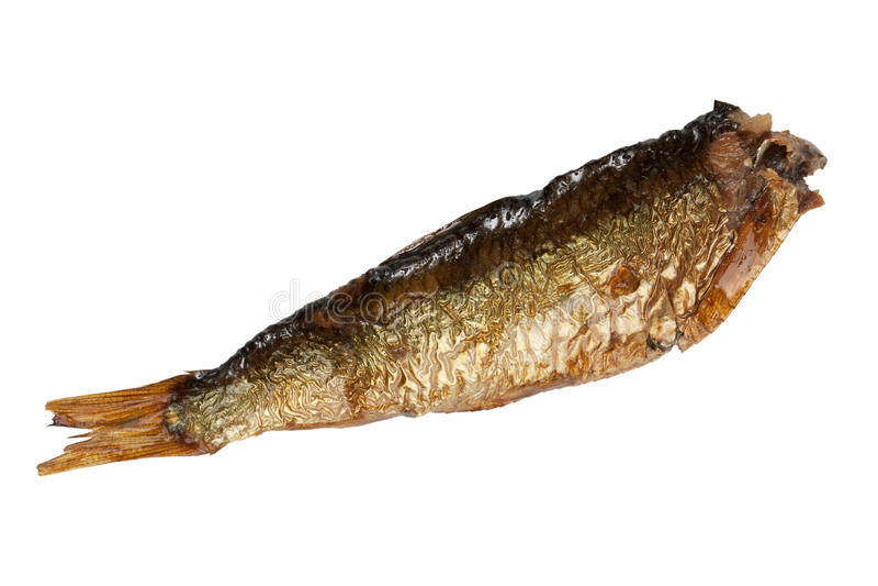 Petits poissons fumés d'esprots photographie stock libre de droits