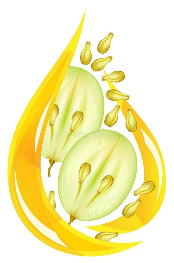 Petróleo de semente da uva. Gota estilizado. ilustração do vetor