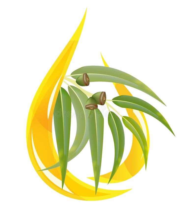 Petróleo esencial del eucalipto stock de ilustración