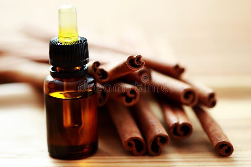 Petróleo essencial da canela fotografia de stock