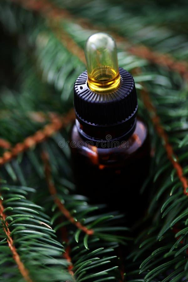 Petróleo essencial de árvore de abeto fotos de stock