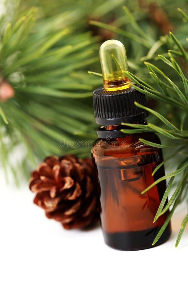 Petróleo essencial de árvore de abeto imagem de stock royalty free