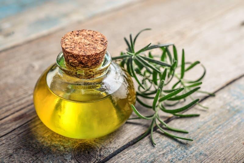 Petróleo essencial de Rosemary fotos de stock