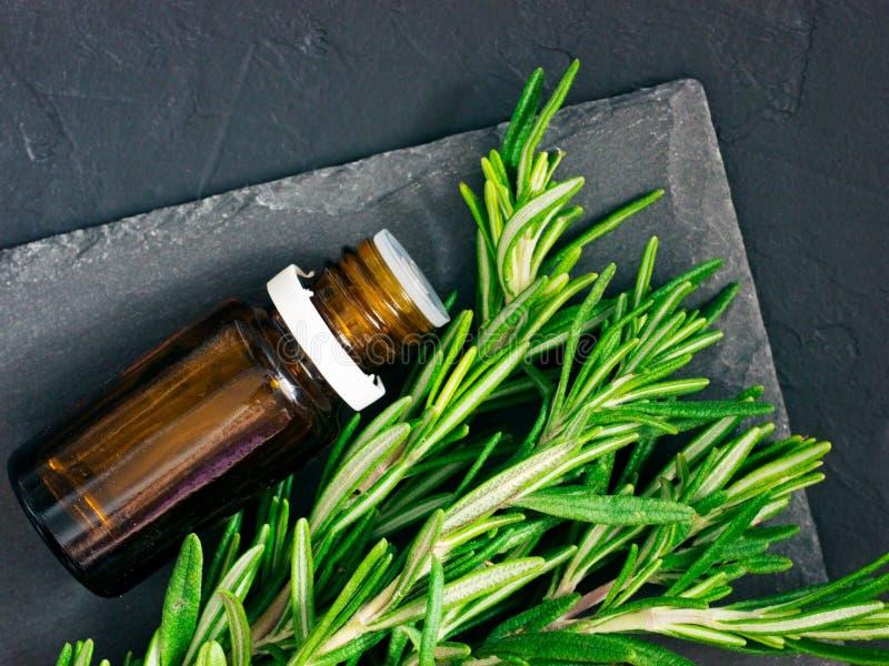 Petróleo essencial de Rosemary foto de stock