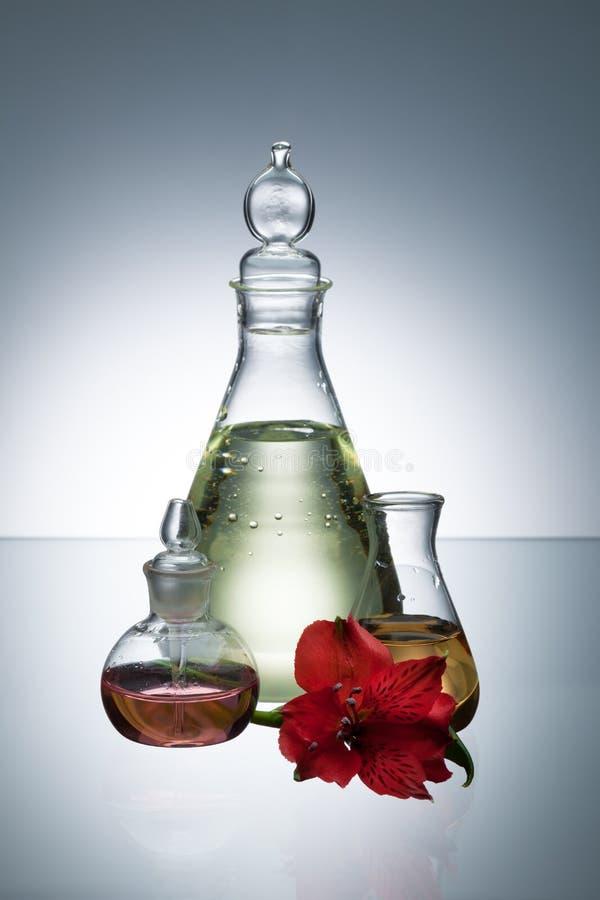 Petróleo essencial e perfume fotografia de stock royalty free