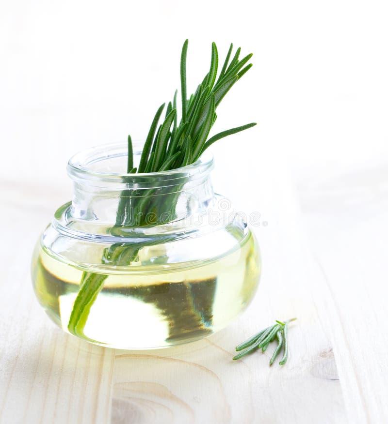Petróleo verde-oliva e rosemary fotos de stock royalty free