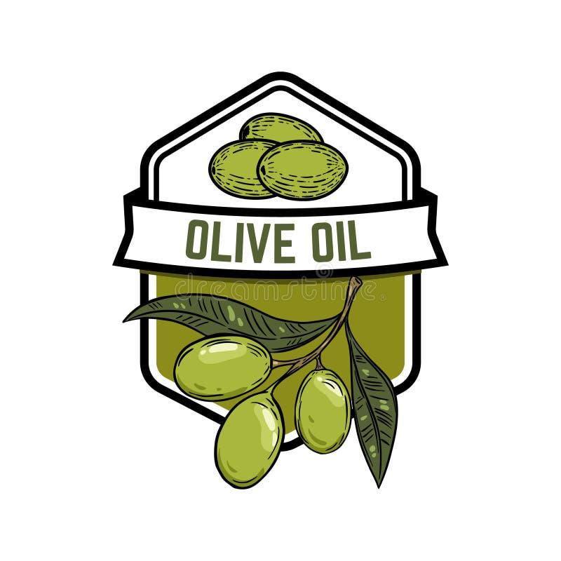 Petróleo verde-oliva virgem extra Olive Branch Projete o elemento para o emblema, sinal, crachá, etiqueta ilustração do vetor