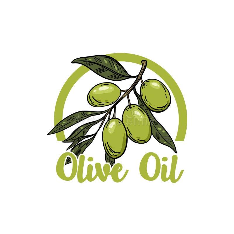 Petróleo verde-oliva virgem extra Olive Branch Projete o elemento para o emblema, sinal, crachá, etiqueta Ilustração do vetor ilustração stock