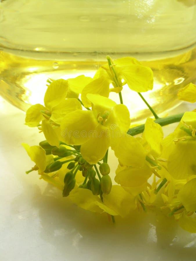 Petróleo y flor - violación fotografía de archivo libre de regalías