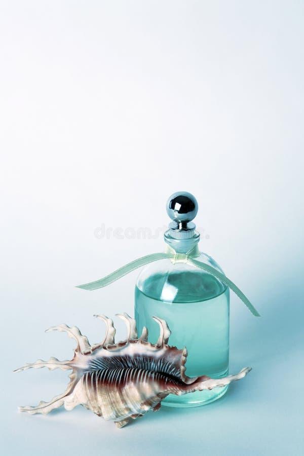 Petróleos essenciais no frasco e no Seashell desobstruídos imagens de stock