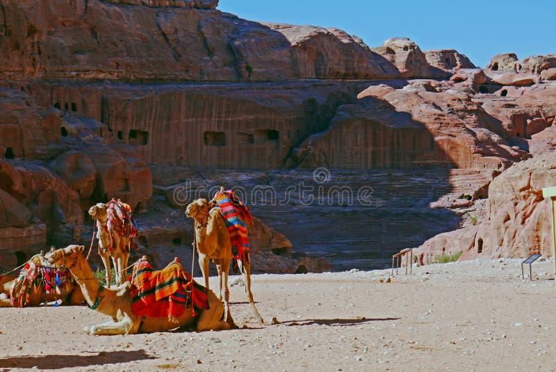 petra Иордана стоковая фотография rf
