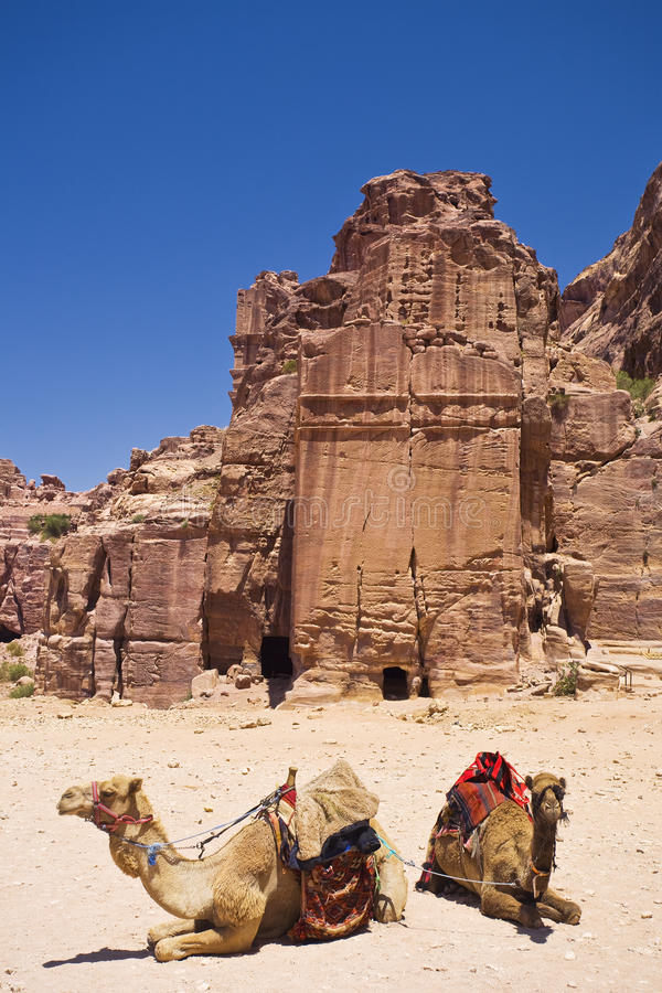 Download Petra stock photo. Image of landscape, middle, harness - 9555482