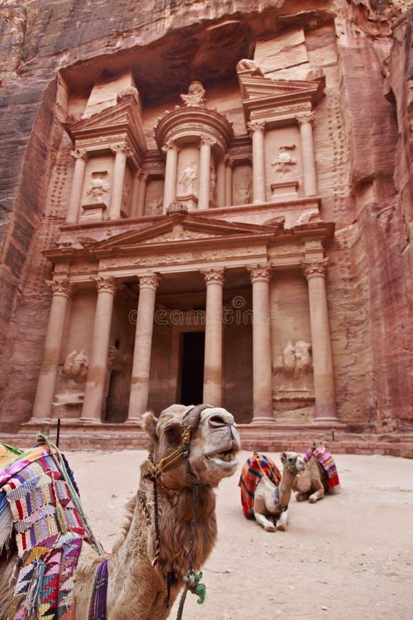 Petra royalty free stock photos