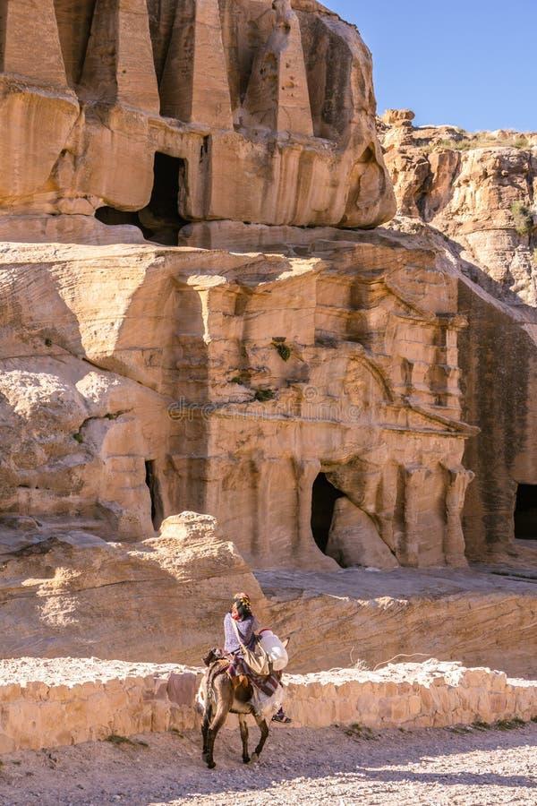 PETRA, GIORDANIA - 30 APRILE 2016: Beduino sugli asini fotografia stock
