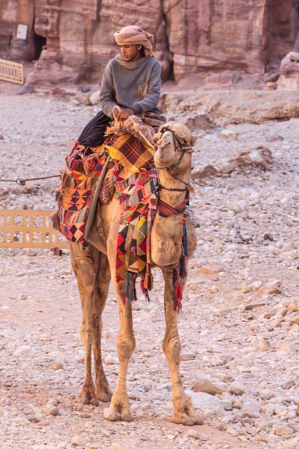 PETRA, GIORDANIA - 28 APRILE 2016: Uomo beduino sul cammello immagini stock libere da diritti