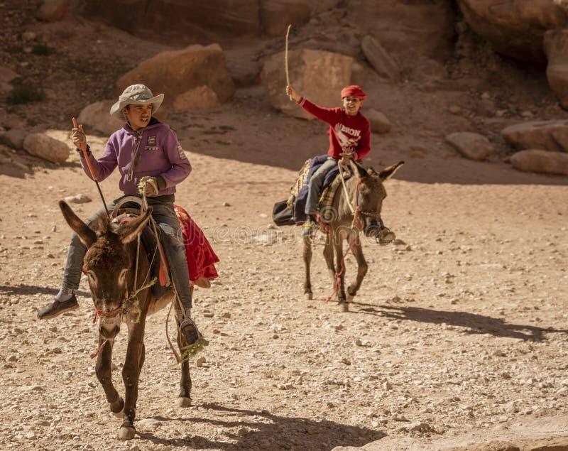 Petra, Jordania osły Jest Pospolitymi Przewiezionymi zwierzętami w Petra Jordania - 2019-04-21 - zdjęcia royalty free