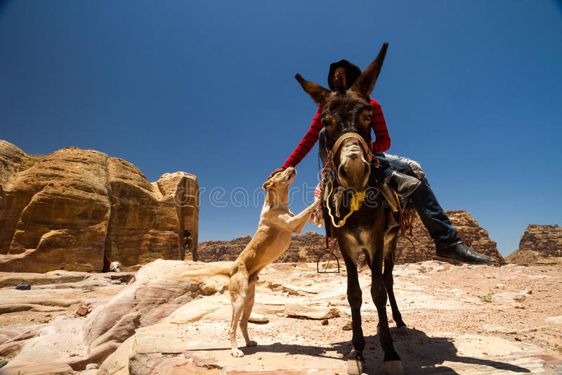 PETRA, Jordanien stockbild