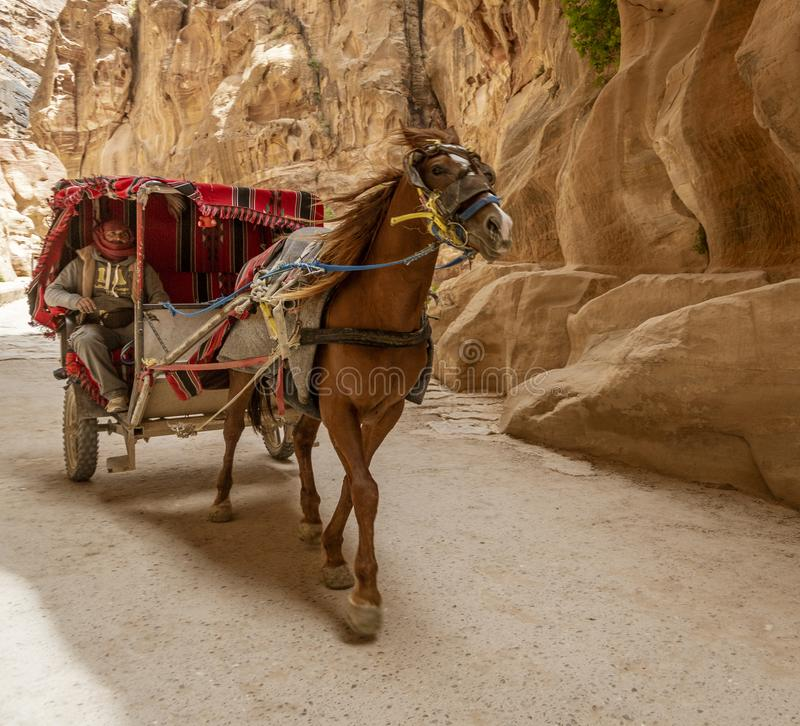 PETRA, Jordanien - 2019-04-21 - Pferd Carriange holt Touristen in das Fiskus-Becken stockfoto