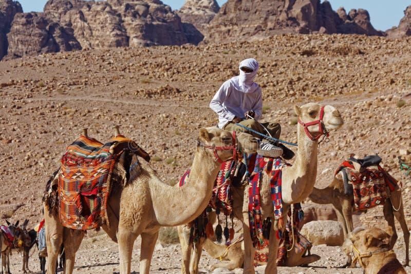 Petra Kingdom de Jordania Pastores del camello de la tribu de Nabataeans imagenes de archivo