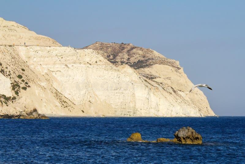 Petra Tou Romiou linia brzegowa, Cypr zdjęcia stock