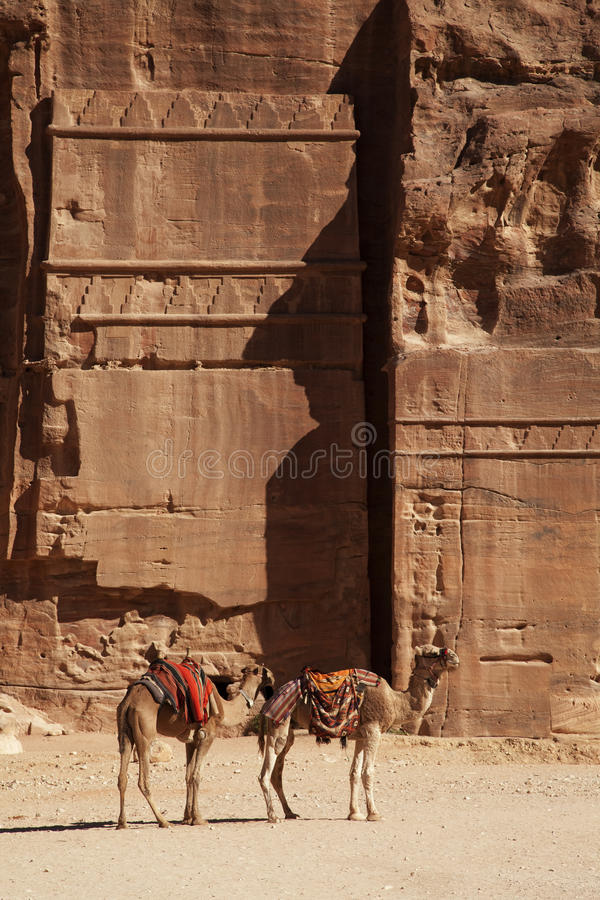 Download Petra view stock image. Image of petra, carving, desert - 17876863