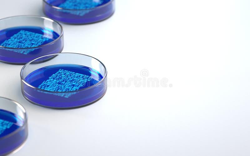 Petri disk med pr?vkopior f?r att ordna f?r DNA royaltyfri illustrationer