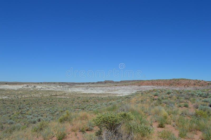 Petriade National Forest Sandy Desert Crusty Surface Road fotografia stock