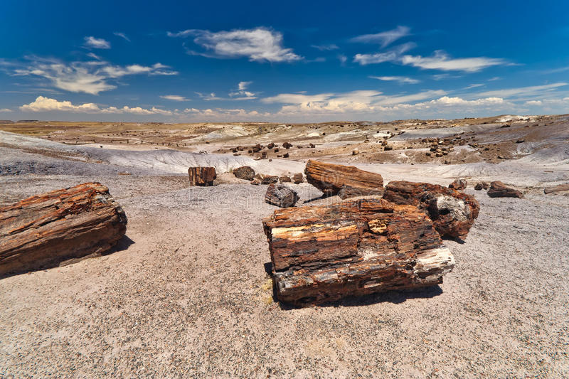 Download Petrified Forest National Monument Stock Image - Image of crystal, arizona: 17333929