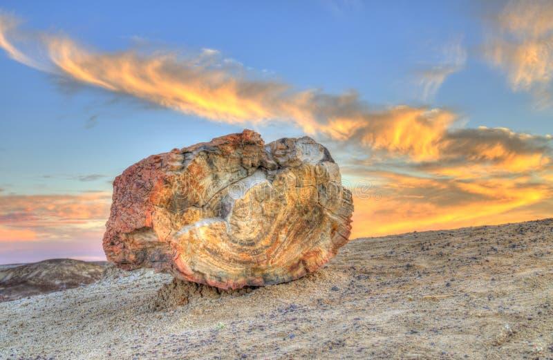 Petrified Sunset stock photos