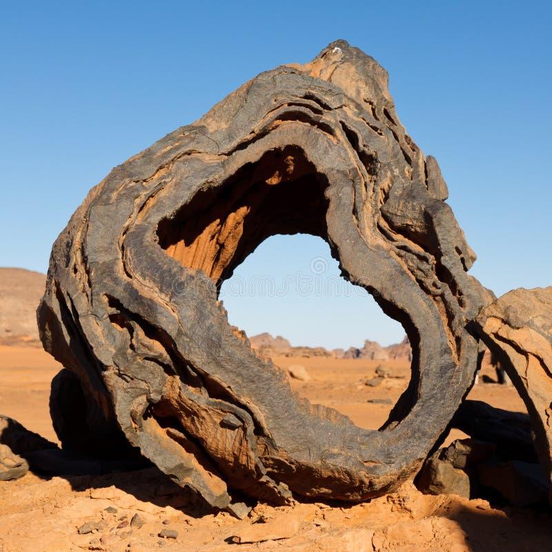 Free Petrified Wood - Akakus Mountains, Sahara Stock Photography - 19030242