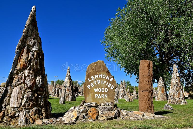 Petrified Wood architecture designs in a park royalty free stock photo