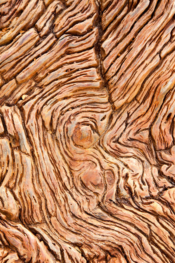 Free Petrified Wood Detail Royalty Free Stock Photography - 28444637
