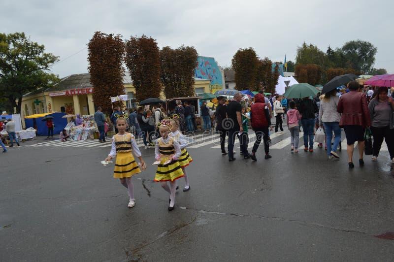 Petrikovka Östlich von Ukraine 15. November 2018 stockfotos