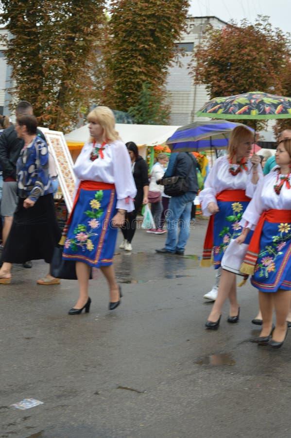 Petrikovka Östlich von Ukraine 15. November 2018 lizenzfreies stockfoto