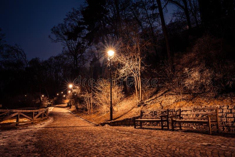 Petrin park at night, prague, czech republic, in winter royalty free stock image
