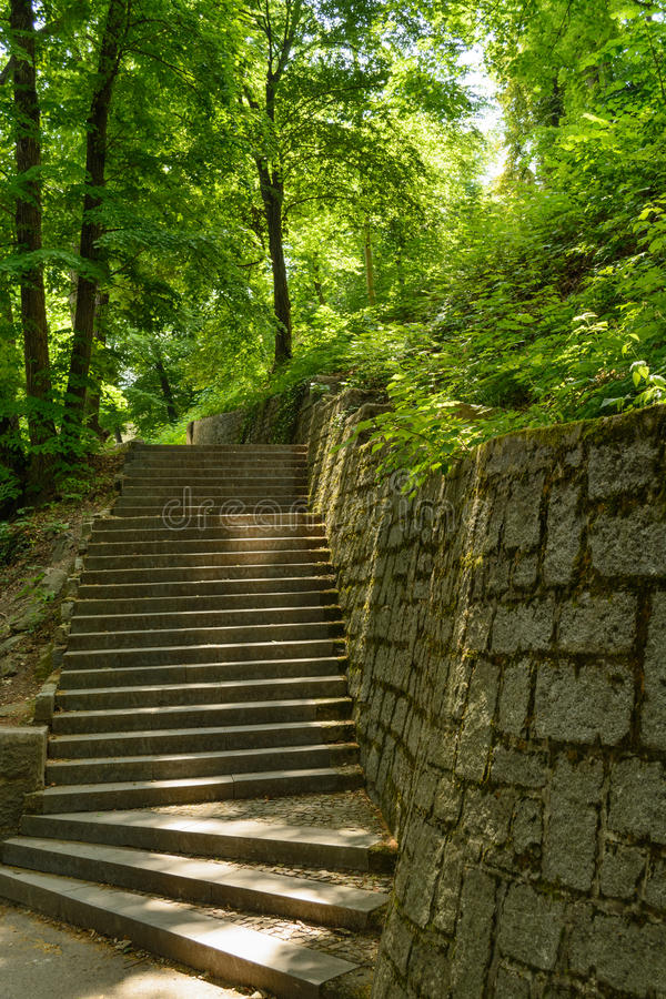 Download Petrin park stock photo. Image of starircase, park, tree - 47213102