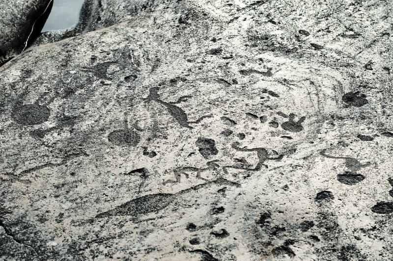 Petroglifos antiguos de los grabados en las placas de piedra de la orilla del lago onega fotografía de archivo