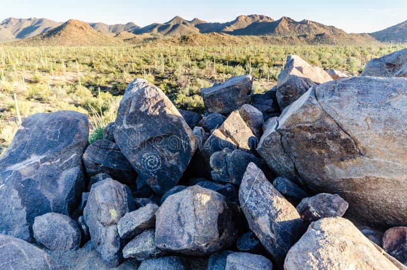 Petroglifos - rastro de la colina de la señal - parque nacional de Saguaro - AZ foto de archivo