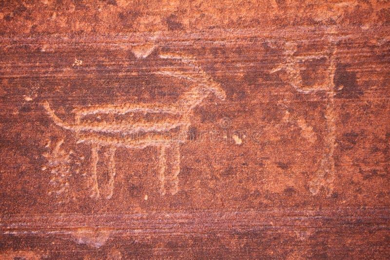 Petroglyph do antílope que pooping imagens de stock