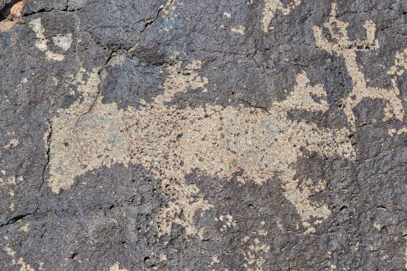 Petroglyphe einer Eidechse lizenzfreies stockbild