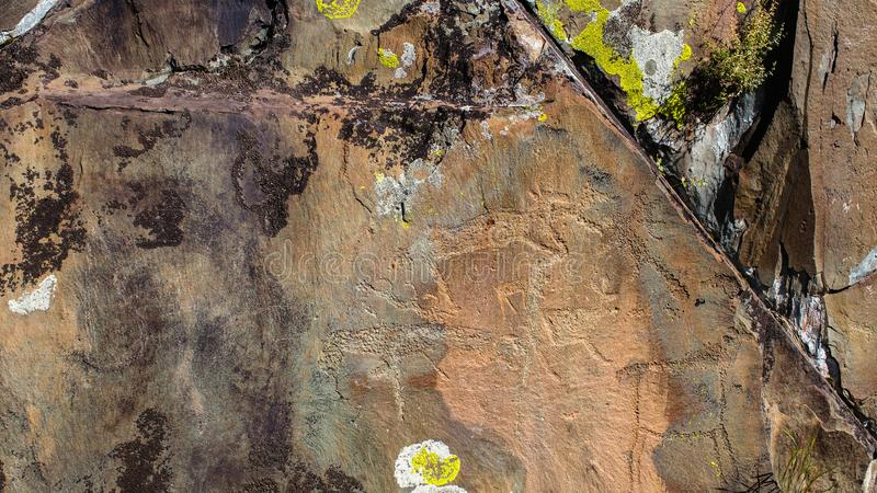 Petroglyphs ancient rock paintings in the Altai Mountains stock image