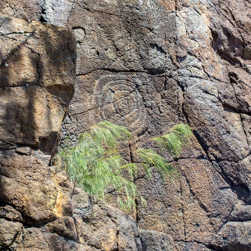 Petroglyphs de Kanak Arte aborígene Carvings velhos antigos habituais tradicionais nativos da rocha dos povos nativos, Nova Caled foto de stock