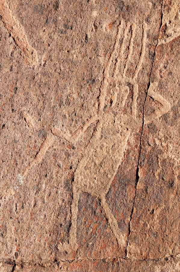 Petroglyphs de Peru, Toro Muerto fotografia de stock royalty free