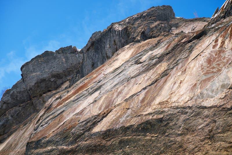 Petroglyphs dos povos antigos nas rochas no banco do rio Tom em Sibéria ocidental fotos de stock royalty free