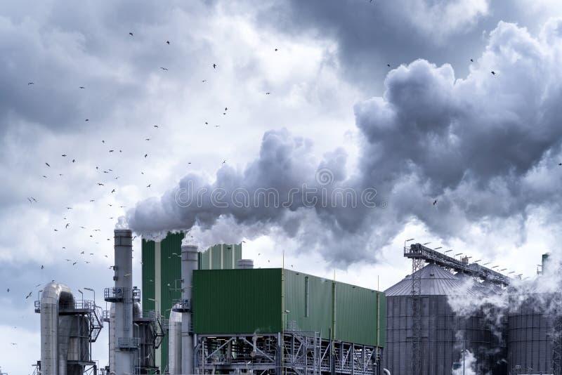 Petrokemisk växt i rotterdam arkivfoton